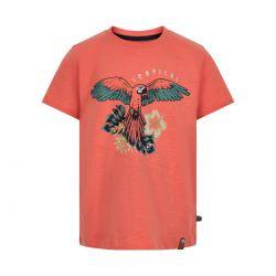 Prévente - Minymo - T-shirt corail